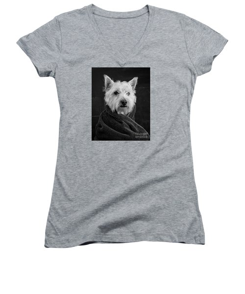 Women's V-Neck T-Shirt featuring the photograph Portrait Of A Westie Dog 8x10 Ratio by Edward Fielding
