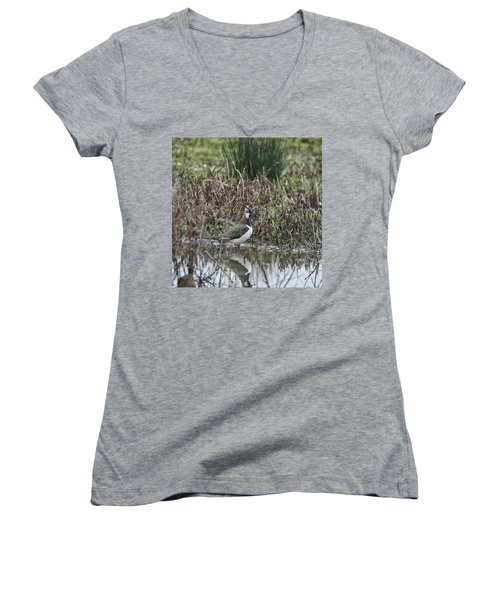 Portrait Of Beautiful Lapwing Bird Seen Through Reeds On Side Of Women's V-Neck T-Shirt (Junior Cut) by Matthew Gibson