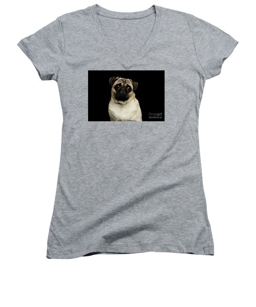 Portrait Of Pug Women's V-Neck T-Shirt