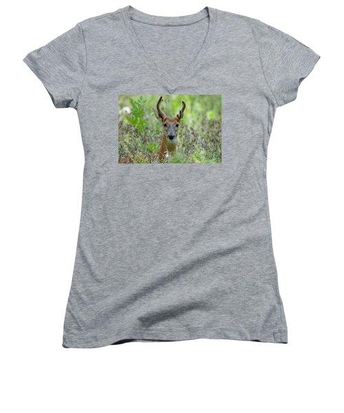 Portriat Of Male Deer Women's V-Neck