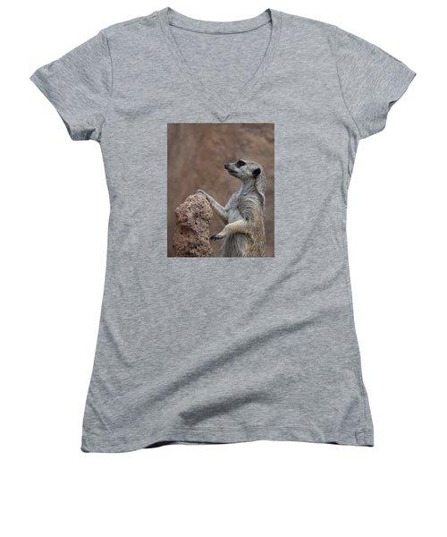 Pose Of The Meerkat Women's V-Neck T-Shirt (Junior Cut) by Ernie Echols