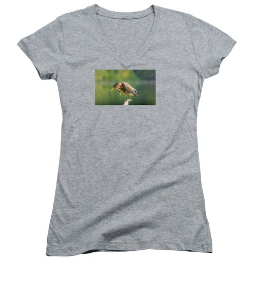 Posing Heron Women's V-Neck T-Shirt