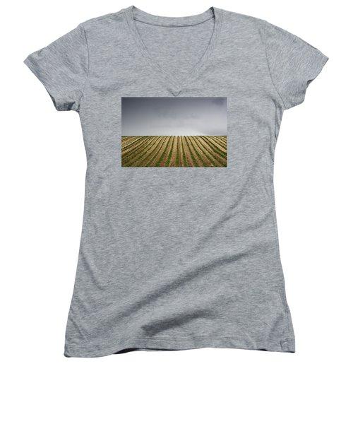 Potato Field Women's V-Neck T-Shirt (Junior Cut) by John Short