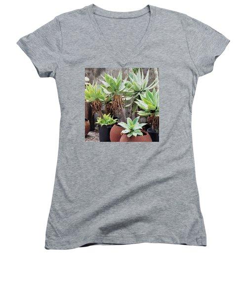 Potted Agave Plants Women's V-Neck