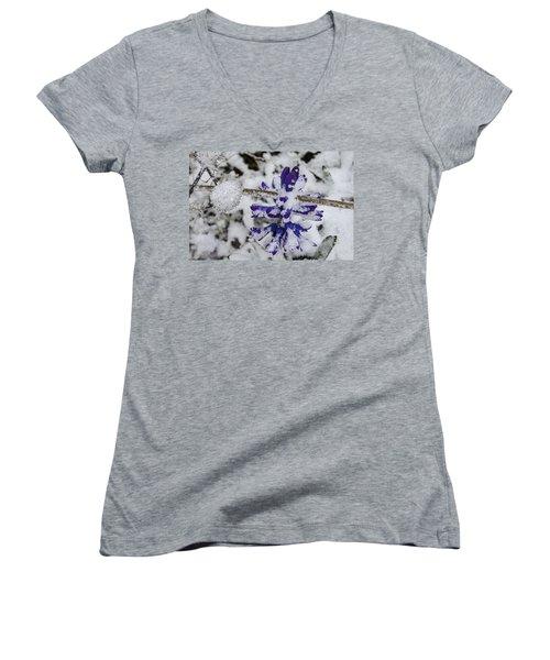 Women's V-Neck T-Shirt (Junior Cut) featuring the photograph Powder-covered Hyacinth by Deborah Smolinske