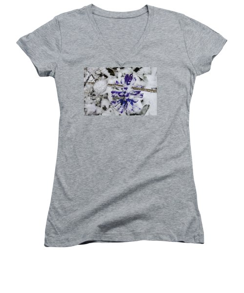 Powder-covered Hyacinth Women's V-Neck T-Shirt