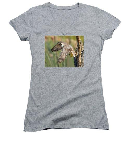 Prairie Falcon Taking Flight Women's V-Neck T-Shirt (Junior Cut) by CR  Courson