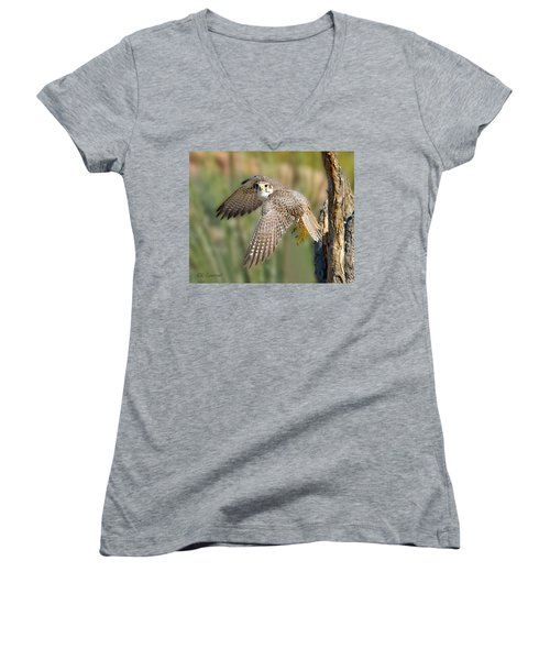 Prairie Falcon Taking Flight Women's V-Neck (Athletic Fit)