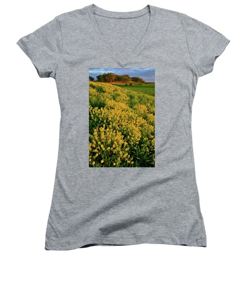 Prairie Of Wildflowers At Glacial Park Women's V-Neck (Athletic Fit)