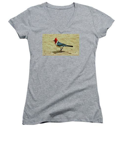 Prancing Brazil Cardinal Women's V-Neck (Athletic Fit)