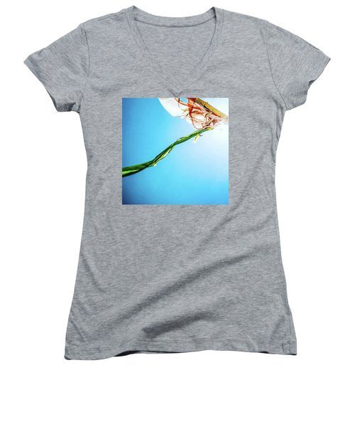 Prayer Flags Blowing In The Wind Women's V-Neck