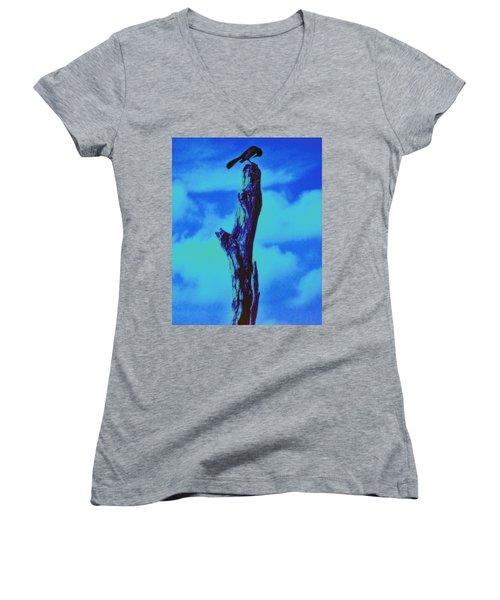 Praying Black Bird Grace In Nature Women's V-Neck T-Shirt
