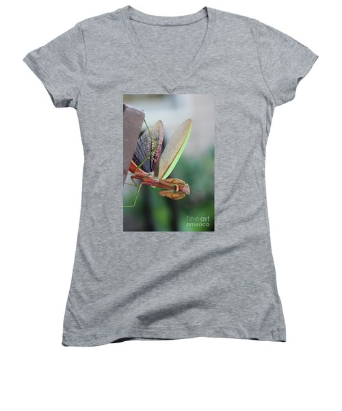 Praying Mantis Women's V-Neck T-Shirt (Junior Cut) by Stacey Zimmerman