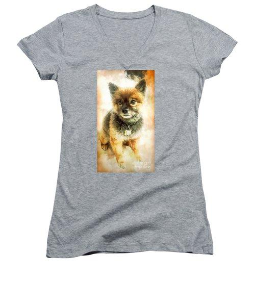 Precious Pomeranian Women's V-Neck T-Shirt (Junior Cut) by Tina LeCour