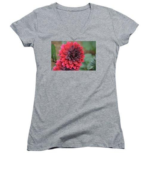 Pretty Blooming Red Dahlia Flower Blossom Women's V-Neck T-Shirt