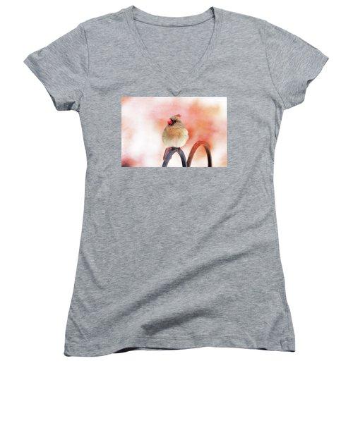 Pretty Cardinal Women's V-Neck T-Shirt (Junior Cut) by Trina Ansel