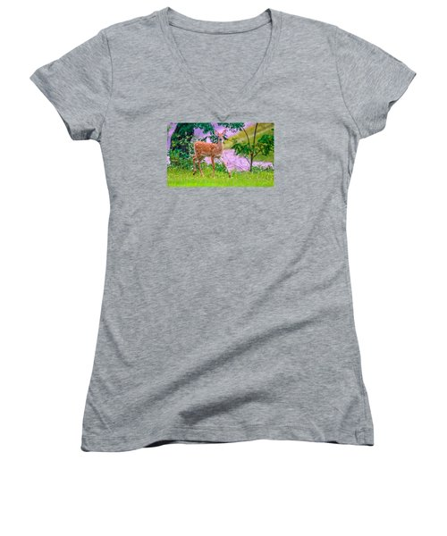 Pretty In Pink 3 Women's V-Neck T-Shirt (Junior Cut) by Brian Stevens