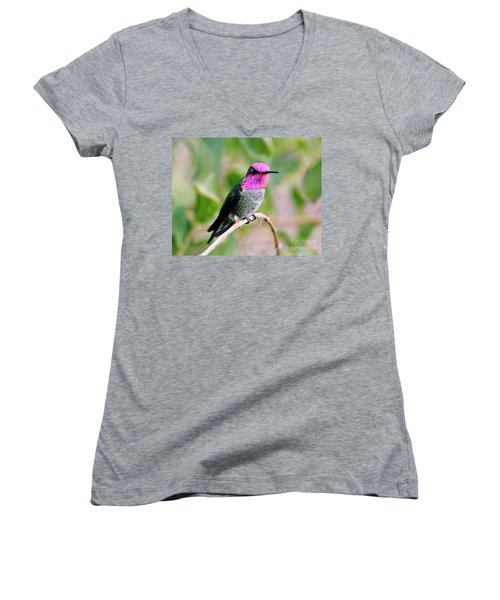 Pretty In Pink Anna's Hummingbird Women's V-Neck (Athletic Fit)
