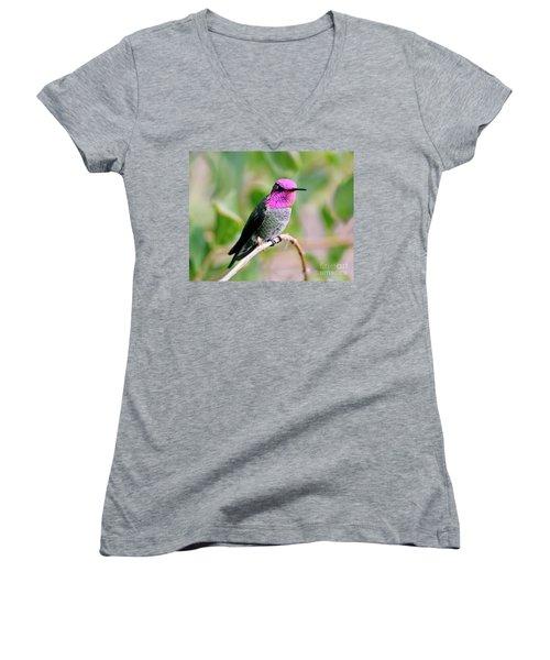 Pretty In Pink Anna's Hummingbird Women's V-Neck T-Shirt