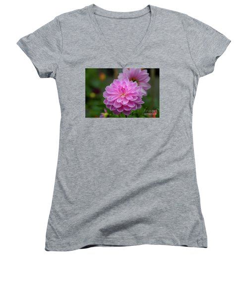 Pretty In Pink 1 Women's V-Neck (Athletic Fit)