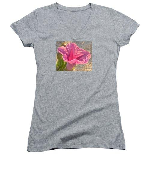 Pretty In Pink Women's V-Neck T-Shirt (Junior Cut) by LeeAnn Kendall
