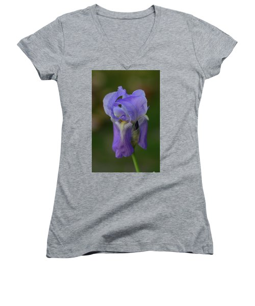 Pretty In Purple Women's V-Neck T-Shirt (Junior Cut)