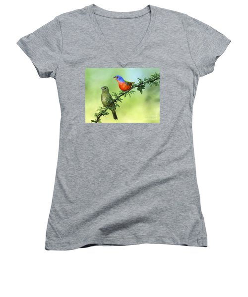 Pretty Painted Buntings Perched Women's V-Neck (Athletic Fit)