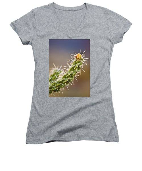 Prickly Branch Women's V-Neck (Athletic Fit)