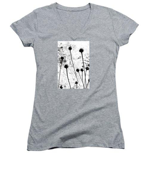 Prickly Buds Women's V-Neck T-Shirt (Junior Cut) by Deborah  Crew-Johnson