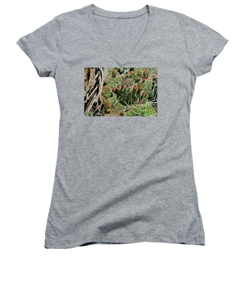 Prickly Pear Revival Women's V-Neck