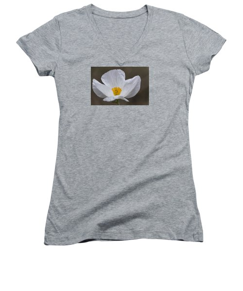 Prickly Poppy Women's V-Neck T-Shirt