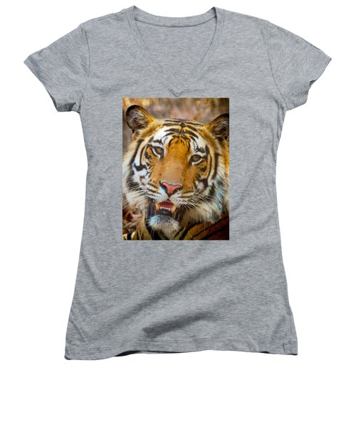 Prime Tiger Women's V-Neck T-Shirt (Junior Cut) by David Beebe