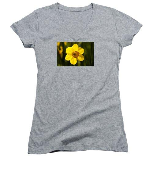 Projecting The Sun Women's V-Neck T-Shirt (Junior Cut) by Dan Hefle