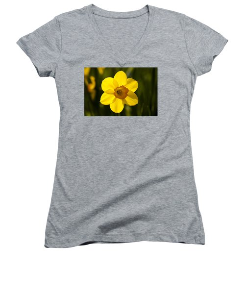 Projecting The Sun Women's V-Neck