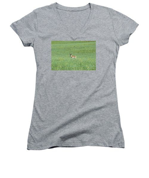 Pronghorn In A Sea Of Green Women's V-Neck