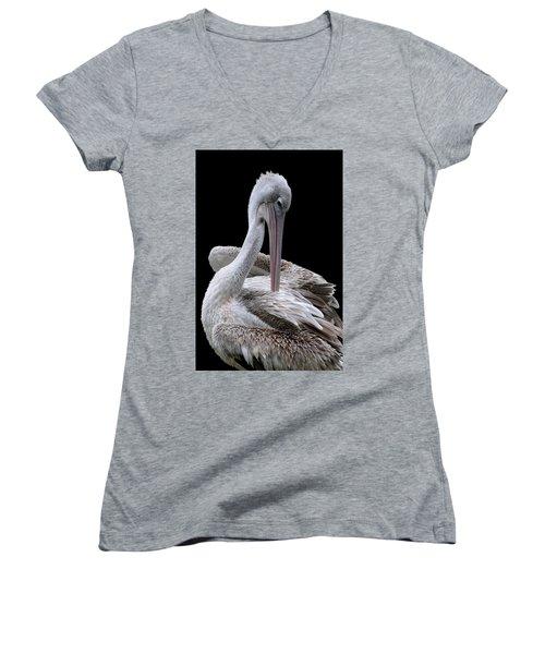 Prospecting - Pelican Women's V-Neck