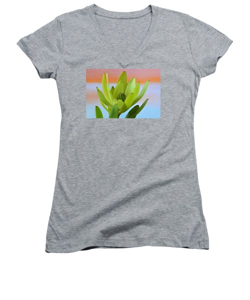Protea Gold Strike. Women's V-Neck T-Shirt (Junior Cut) by Terence Davis
