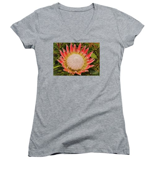 Protea I Women's V-Neck T-Shirt