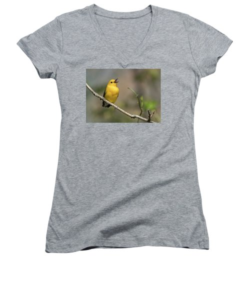 Prothonotary Warbler Singing Women's V-Neck (Athletic Fit)