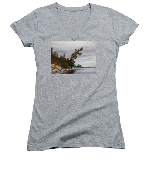 Ptarmigan Bay Women's V-Neck T-Shirt (Junior Cut) by Ruth Kamenev