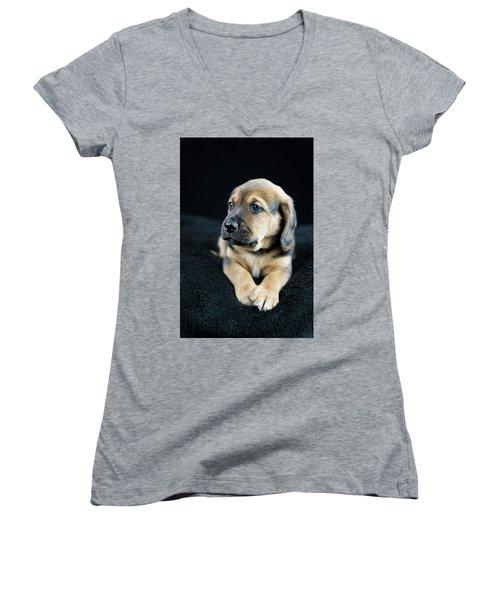 Puppy Portrait Women's V-Neck (Athletic Fit)