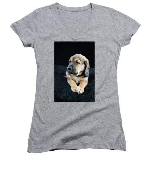 Puppy Portrait Women's V-Neck T-Shirt