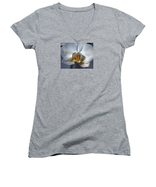 Women's V-Neck T-Shirt (Junior Cut) featuring the photograph Pure Form And Color by Lynda Lehmann