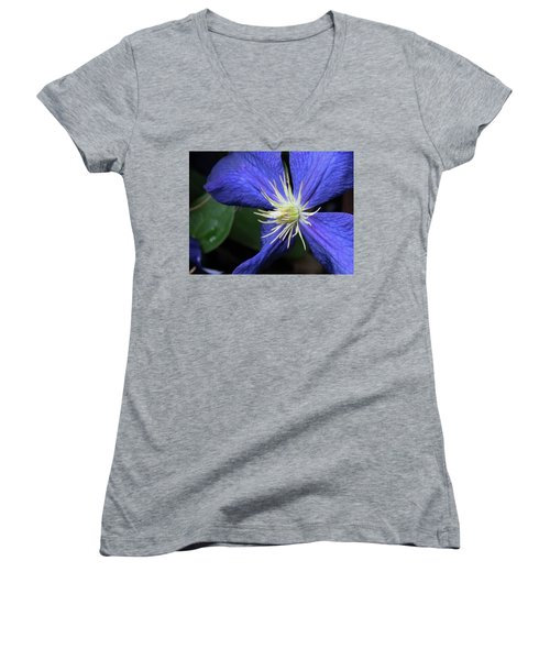 Purple Clematis Women's V-Neck T-Shirt (Junior Cut) by Rebecca Overton