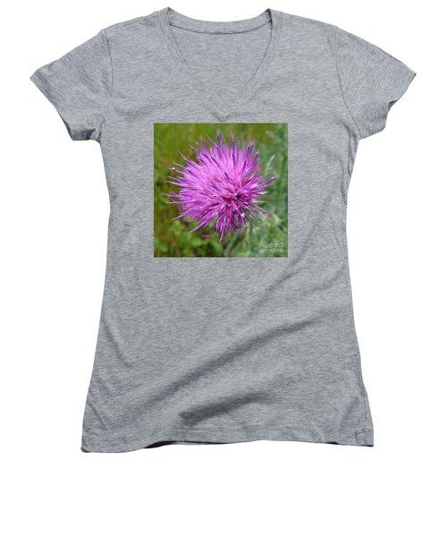 Purple Dandelions 2 Women's V-Neck T-Shirt (Junior Cut) by Jean Bernard Roussilhe