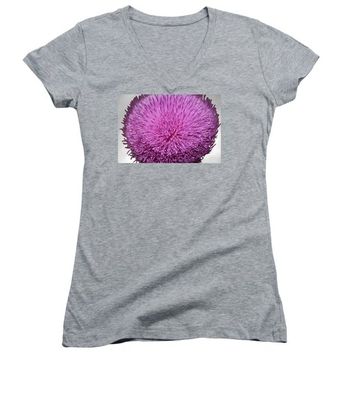 Purple Elegance Women's V-Neck T-Shirt