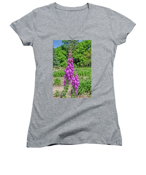 Purple Foxglove Digitalis Purpurea L Women's V-Neck