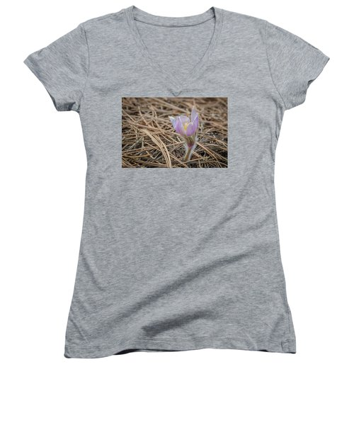 Purple In The Pine Women's V-Neck T-Shirt