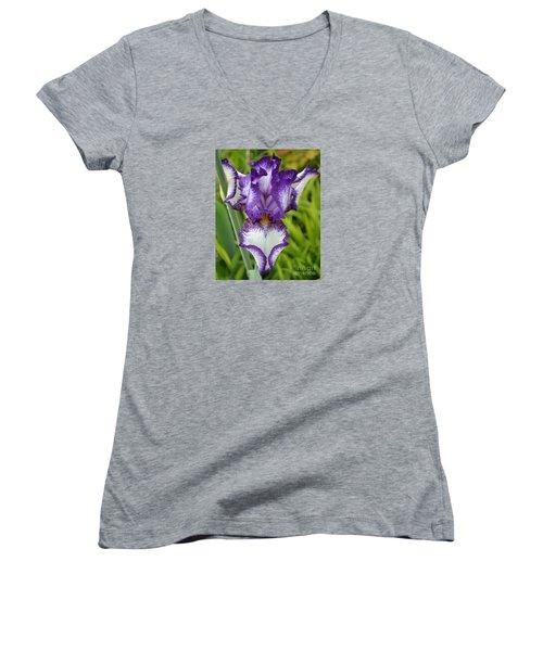 Purple Iris Art Women's V-Neck T-Shirt
