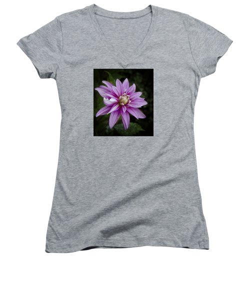 Purple Pink Dahlia Women's V-Neck